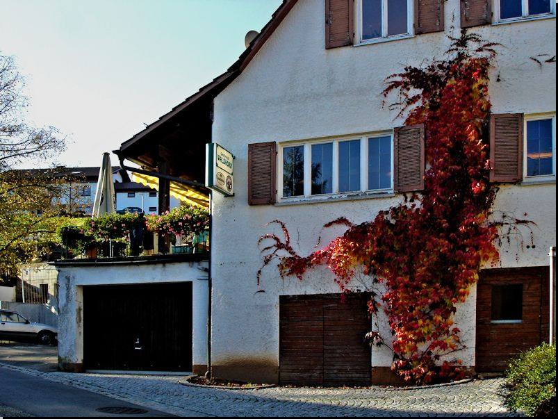 Gasthaus Waldhorn in Walkersbach