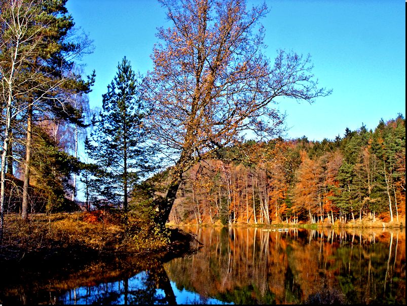 am Finsterroter See